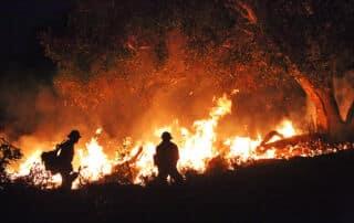 Thomas Wildfire - California 2017