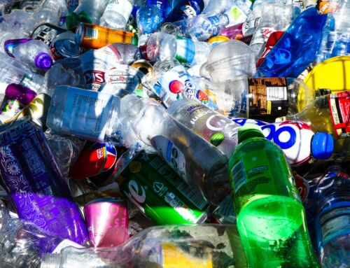 Game-Changing Plastic Recycling Process Promoted by Sir David Attenborough